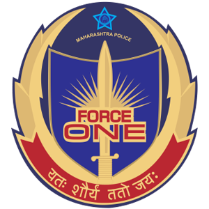 force-one-logo