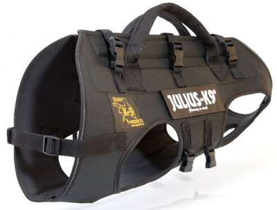 rappelling-dog-harness
